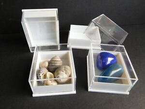20 Small Perspex Clear Lid Crystal Fossil Display Boxes   Black Or White Bases