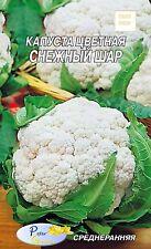 Graines de Chou-fleur La boule  de neige - 130 graines