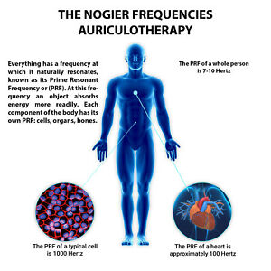 THE NOGIER FREQUENCIES AURICULOTHERAPY CD