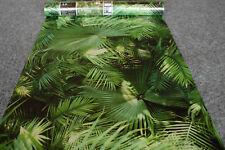 Vliestapete 36200-1 AS Creation Tapete Palmen Blätter grün 362001 Neue Bude 2.0
