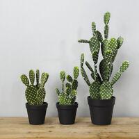 32cm Artificial Succulents Cactus Plants Bonsai Table Garden Home Party Decor