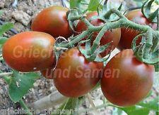 kleine Mohren Tomato black Tomaten 10 fresh seeds Balcony Tub