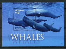 Grenada 2015 MNH Whales Sperm Whale 1v S/S II Marine Mammals Animals Stamps
