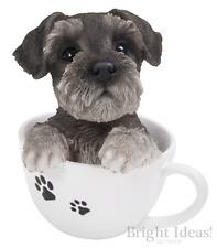 Vivid Arts-Pet Pals chiot dans tasse à thé & Schnauzer Boîte-Miniature Schnauzer