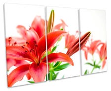 Tiger Lily Floral Flower Treble Canvas Wall Art Box Framed Picture