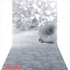 Winter 10'x20' Computer/Digital Vinyl Scenic Photo Backdrop Background SM-038B88