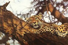 """LYNDSEY SELLEY """"That Time of Day"""" leopard SIGNED LTD ED SIZE:46cm x 63cm NEW"""