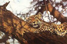 """Lyndsey Selley """"que le temps du jour"""" léopard signé ltd ed taille: 46cm x 63cm neuf"""