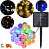 Solar Powered LED String Light Garden Path Yard Lamp Outdoor Waterproof Decor US