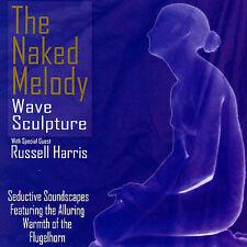 David Hudson : The Naked Melody CD