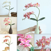 1pcs Artificial Butterfly Orchid Silk Flower Fake Plant Wedding Home Decoration