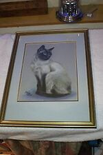 Original Colour Pencil Drawing by Paul Weller Blacks Greys to White Siamese Cat