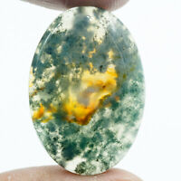 Cts. 31.75 Natural Designer Moss Agate Cabochon Oval Cab Loose Gemstone