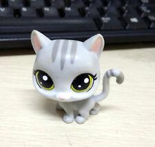 "2"" Hasbro Littlest Pet Shop LPS Grey Cat Kitten Yellow eyes Figure Toy Colletion"