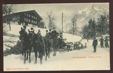 Switzerland Gindelwald Sledging Party  Plaisir D Hiver Winter Sleigh Ride PPC