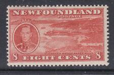 Newfoundland 1937 Sg 260e perf 131/2 MNH