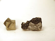 Very nice meteorite fresh Eucrite, fall 2016 paired NWA11504 fragment 2.74g