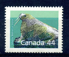 Canada 1171c VF unused 44c Atlantic Walrus, rare perf 13.8 x 13.1 CV $300