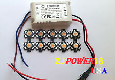 10pcs 3W Full Spectrum 380nm~840nm Led Grow Lights With A 6-10x3W Led Driver