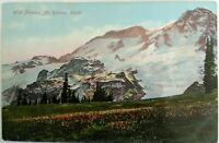 100 yr old view-Divided back postcard 1907-1915 Mt Rainier, WA--Printed Germany