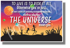 To Live is to Risk it All 2 - NEW Funny Rick & Morty POSTER (hu447)