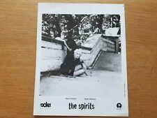 THE SPIRITS 8x10 BLACK & WHITE Press Photo NICKY WILLIAMS RONNI O'KEEFE Pop Band