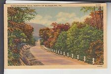 Color Susquehanna Trail North of Blossburg Penn PA    S-382