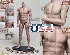 JX TOYS 1/6 Scale Emulated Male Muscular Figure Body JXS01 U.S.A. IN STOCK