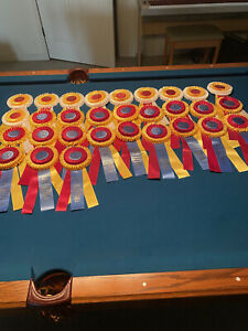 30 Champion and Reserve Champion Horse Show Ribbons.