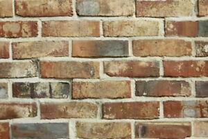 Feldbrandsteine Verblender WDF BH1106 rot-braun-bunt Vormauersteine Klinker