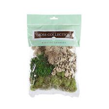 Moss Variety Pack, 2.5 oz - Miniature Dollhouse Fairy Garden Lawn Grass