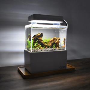 Mini Complete Tank Paludarium Terrarium Nano Desktop Aquascape Fish Aquarium New