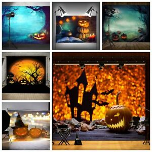 Pumpkin Studio Photography Background Backdrop Photo Wall Props Valentine's