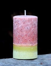 200hr GRAPEFRUIT & HIBISCUS FLOWERS Citrus Tropical Scented ARTISTIC CANDLE Gift