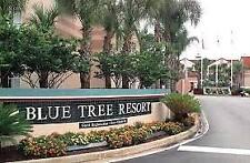 2019 BLUE TREE RESORT 2  BED 7 NIGHT RENTAL FLOATING WEEK  WALT DISNEY WORLD