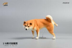 JXK JXK054C 1/6th Shiba Inu Raise Leg Pee Pet Dog Resin Figure Statue Collection