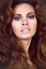 RAQUEL WELCH BEAUTIFUL HEAD SHOT COLOR 24X36 POSTER