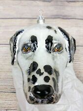Slavic Treasures Dalmatian Dog Silver Lined Hand Blown Glass Christmas Ornament