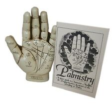 Palmistry Hand Kit Boxed Palm Reading Divinitory