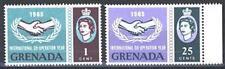 GRENADA - 1965 - Ventennale delle Nazioni Unite
