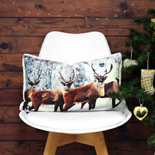 Winter Sparkly Christmas Stag Reindeer Boudoir Reversible Cushion Cover 30x50cm