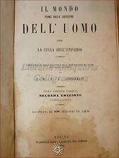 GEOLOGIA: Zimmermann, IL MONDO PRIMA della CREAZIONE DELL'UOMO 1859 Incisioni