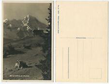 38288 - Mürren mit Breithorn - Echtfoto - alte Ansichtskarte