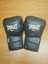 Everlast Protex 2 Lace up leather boxing gloves 16oz. Not Winning, Reyes, Grant