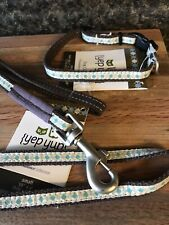 New Small dog collar and leash Yep Yup Boutique Prominence set