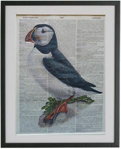 Puffin Bird Print No.641, puffin bird poster, dictionary art, puffin gifts