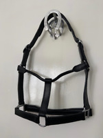 HEAD COLLAR LEATHER PADDED ECONOMY SIZE FULL COLOUR BLACK