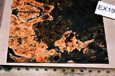 1 Platte Door Ahorn Maser schwarz stabilisiert lochfrei 115x70x3mm puq EX19