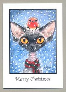 Devon Rex cat art Christmas cards robin from original painting Suzanne Le Good