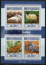 MOZAMBIQUE  2015 CATS  SHEET MINT NEVER HINGED